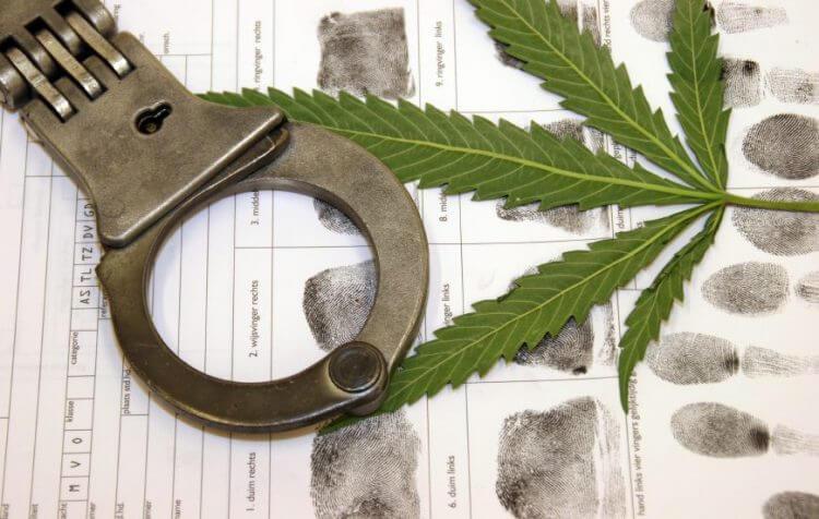 华裔切勿以身试法,运送大麻或现金过多恐被递解!资深犹太律师提醒被指控运毒有权要求律师代表