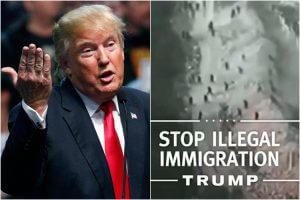 特朗普当选美国总统,非法移民何去何从