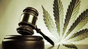 marijuana leagalization